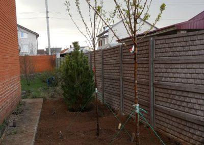 Посадка растений на придомовой территории частного дома, Нагорный