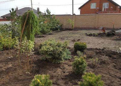 Посадка растений —  Большие Кабаны