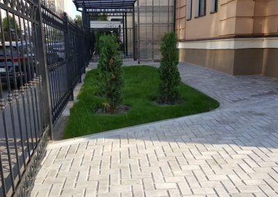 Посадка газона и растений на участке в Казани