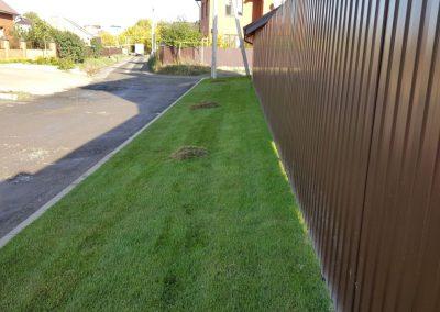 Прочесывание газона — поселок Вознесение