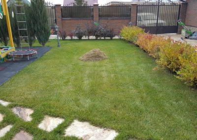 Прочесывание газона — Введенская слобода