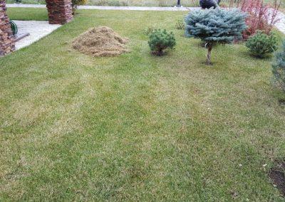 Прочесывание газона, Габишево