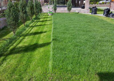 Никольская усадьба, стрижка газона, обслуживание газона