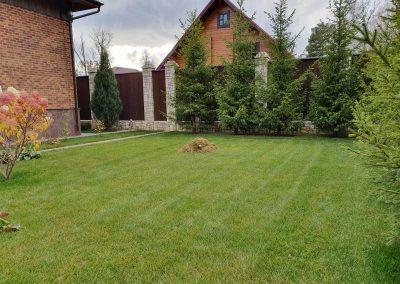 Прочесывание газона — Боровое матюшино