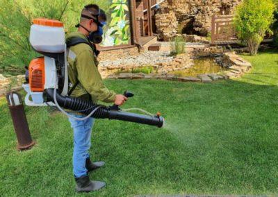 Обработка газона от болезней — Царицыно
