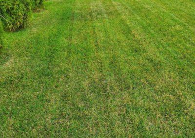 Щербаково — аэрация газона, сезонное обслуживание