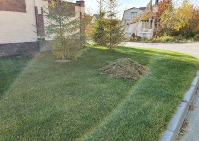 Прочесывание газона и обслуживание к концу сезона — Царицыно