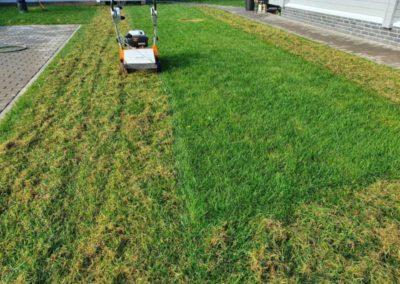 Прочесывание и аэрация газона, внесение удобрений на участок — СНТ ГАИ
