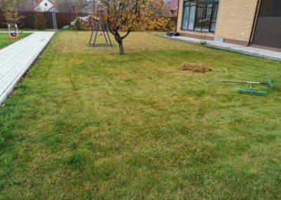 Вознесение, прочесывание газона на участке