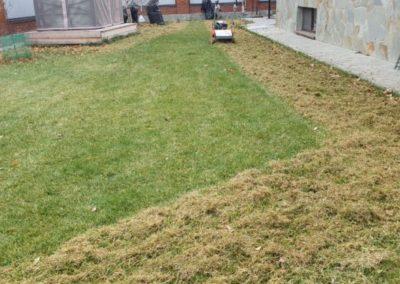 Прочесывание газона — Константиновка