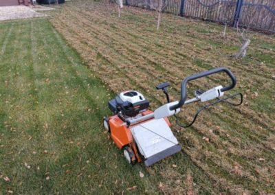 Никольская усадьба — прочесывание газона на садовом участке