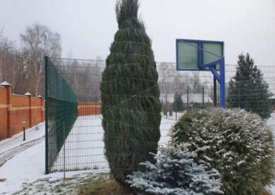 Мирный — укрытие растений на зиму