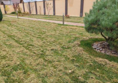 Званка — прочесывание газона