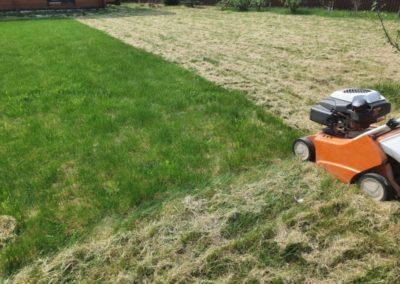 Обслуживание газона — прочесывание, Маевка
